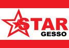 Star Gesso - logo